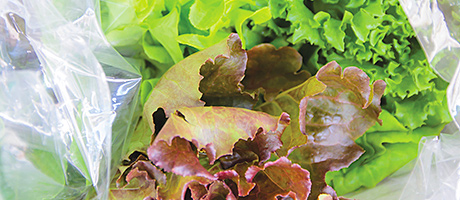 Grocer goes to war on waste