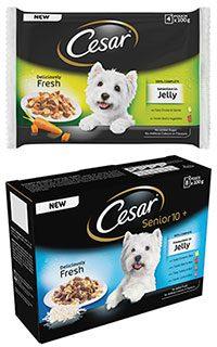 Cesar, petfood, c-stores, shopping, Scotland