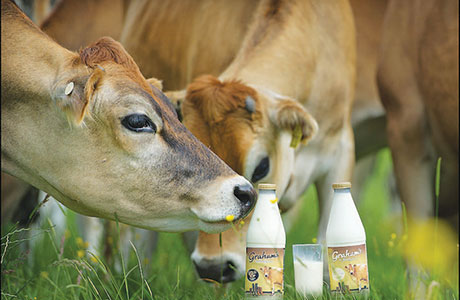 Dairy family to expand