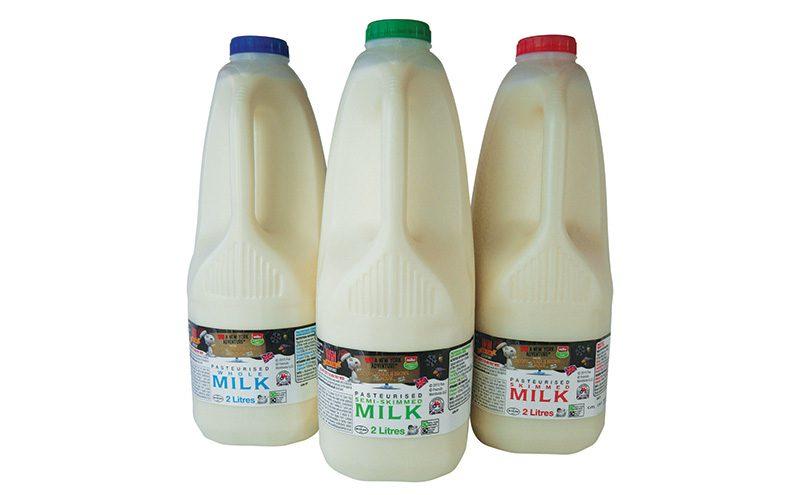 Wiseman Peanuts movie milk Dec 2015