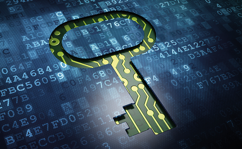 Smaller businesses appear to be leaving themselves open to the growing threat of cyber crime, says business adviser RSM.