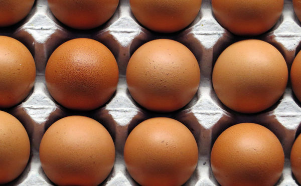 Egg scare rattles buyers' cages